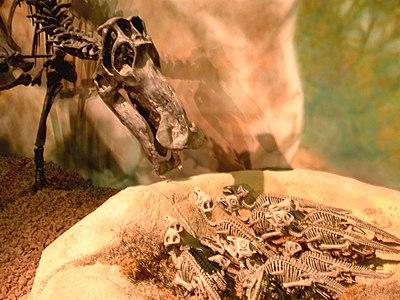 恐竜 - Wikiwand