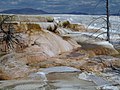 Mammoth Hot Springs Terraces - Yellowstone - panoramio.jpg