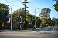 Mandeville Cyn Rd Looking North From Sunset Blvd.jpg