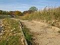 Mansfield Park - panoramio (2).jpg
