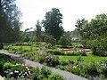 Maplelawn Gardens.jpg