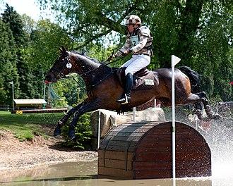 Matthew Ryan (equestrian) - Image: Matt Ryan Bonza Moorabinda Treasure Chests Houghton 2013
