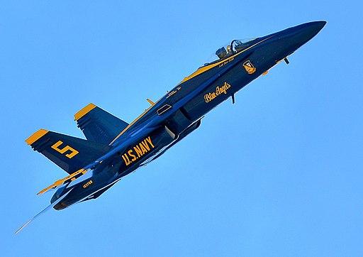 Alert 5 » Blue Angels No  5 had bird strike - Military Aviation News