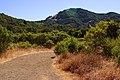 Meadow Trail.jpg