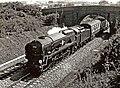 "Merchant Navy Class ""Clan Line"" 35028 loco on running trial near Swindon - geograph.org.uk - 1112285.jpg"
