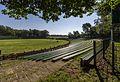 Merfeld, Wildpferdefang -- 2014 -- 7881.jpg