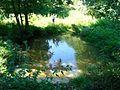 Mergel river.jpg