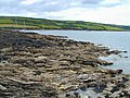 Messack Point, Nr St Just in Roseland - geograph.org.uk - 27421.jpg