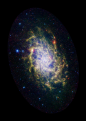 Messier 33 - Spitzer Space Telescope - Ssc2009-08a1-rot.png