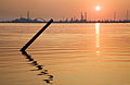Mestre - Sunset - 3491.jpg