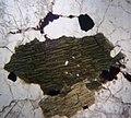 Microscopic image Pyroxene.jpg