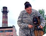 Military Working Dogs Are Vital Members of Manas K-9 Crew DVIDS172133.jpg