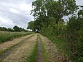Mill Lane towards the crossing - geograph.org.uk - 1365257.jpg
