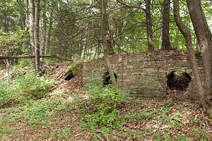 Minersville Coke Ovens - Looking west down a line of coke ovens, the ruins in September 2014