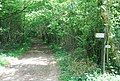 Monarch's Way - round Lodge Coppice - geograph.org.uk - 445769.jpg