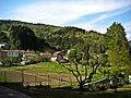 Montepiano 2.jpg