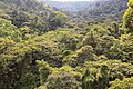 Monteverde Costa Rica 07.jpg
