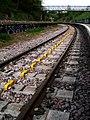Montpelier railway station stringberd 1.jpg
