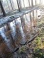 Mooie modder (31320037081).jpg