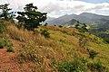 Morong, 2108 Bataan, Philippines - panoramio (26).jpg