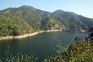 San Gabriel River (California) - Morris Reservoir is the lower of two major reservoirs in San Gabriel Canyon