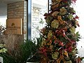 Morton Arboretum Winter 2005 01.JPG