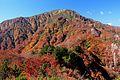 Mount Ogasa from Mount Maeoizuru.jpg