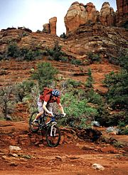 Mountain biker riding in the Arizona desert.
