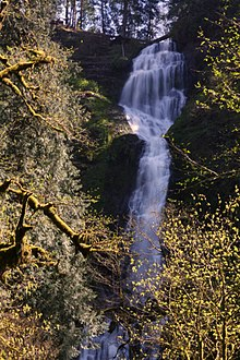 Munson Creek Falls.jpg