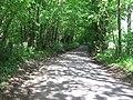 Mussenden Lane in Horton Wood - geograph.org.uk - 1314896.jpg