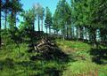 NRCSCO01035 - Colorado (1457)(NRCS Photo Gallery).tif