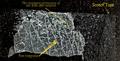 NYU Langone Core Microscopy Scarguard Nanofilm.png