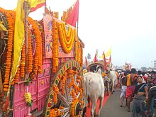 Colourful oxcarts