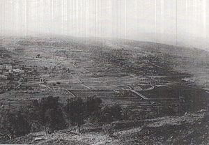 Norfolk Yeomanry - The Nablus Road, Ain Sinai and Yebrud (photo taken by 230th Bde).