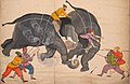 Nainsukh - Two Elephants Fighting in a Courtyard Before Muhammad Shah - 2005.1 - Cleveland Museum of Art (cropped).jpg