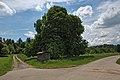 Naturdenkmal Drei Kastanien, Kennung 82350800004, Wildberg, von Nordosten.jpg