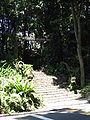 Nature Walk and Dragon Trail, Sentosa, Aug 06.JPG