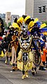New Orleans Mardi Gras 2017 Zulu Parade on Basin Street by Miguel Discart 06.jpg