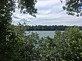 Niagara River at Lewiston, New York - 20200712.jpg