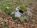 Niedersachsen, Schätzendorf, am Botenberg, Wanderblock, Naturdenkmal ND WL 00010.jpg