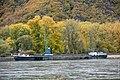 Niedrigwasser am Jungferngrund im Rhein (40461602013).jpg