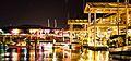 Night time view, Florida, USA.jpg