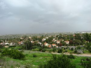 Community settlement (Israel) - View of Nirit