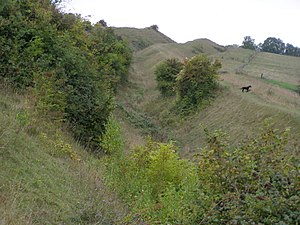 Hod Hill - A view of the northern side of Hod Hill with the inner rampart on the left, the ditch in the middle and the outer rampart on the right.