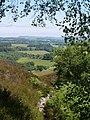 Northumbrian Landscape - geograph.org.uk - 1376712.jpg