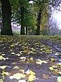 Nowe Planty - panoramio (8).jpg