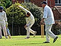 Nuthurst CC v. The Royal Challengers CC at Mannings Heath, West Sussex, England 08.jpg