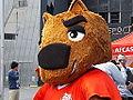 Nutmeg the Mascot.JPG