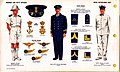 ONI JAN 1 Uniforms and Insignia Page 102 Royal Netherlands Navy WW2 Warrant and petty officers October 1943 Field recognition. US public doc. No known copyright.jpg