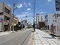 Okazaki-Renjakudori-6.jpg